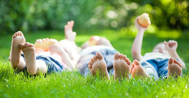 Benefits of a Healthy Lawn - Carolina Vistas Lawn Care