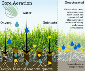 Benefits of Core Aeration
