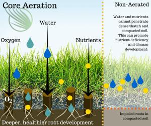 Benefits of Core Aeration