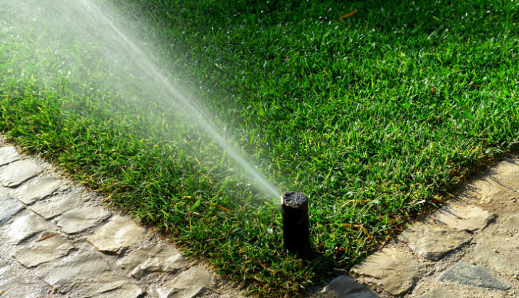 Tips for Proper Lawn Watering
